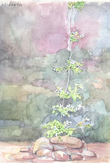 flores13