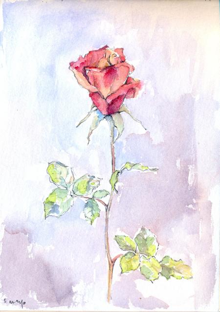 flores16