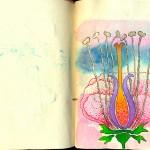 página nº 1